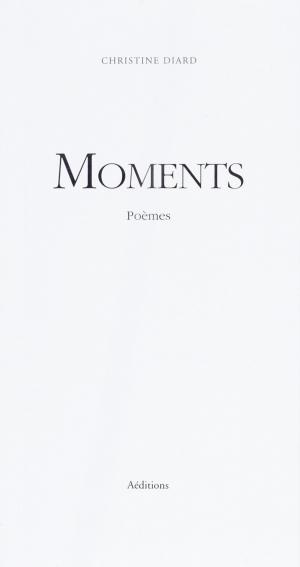 "Christine Diard, ""Moments"""