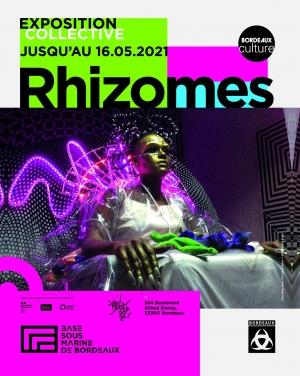 """""""Rhizomes"""""""